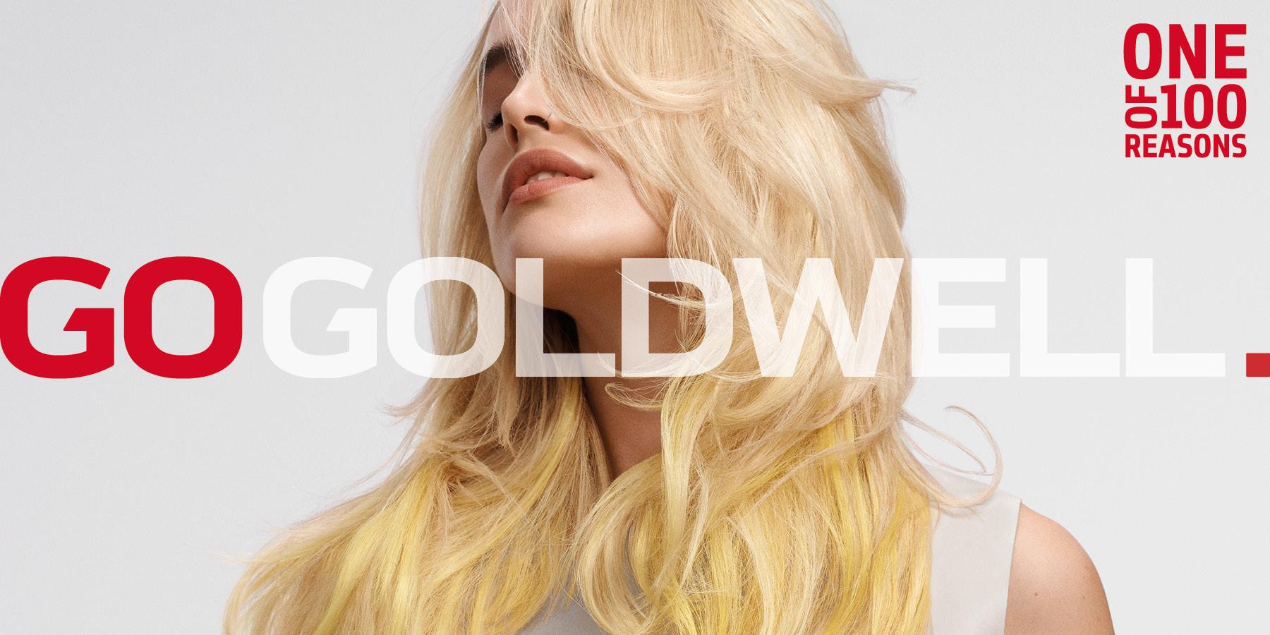 GW-MB-GOGOLDWELL-Home-Fullscreen-Teaser-2